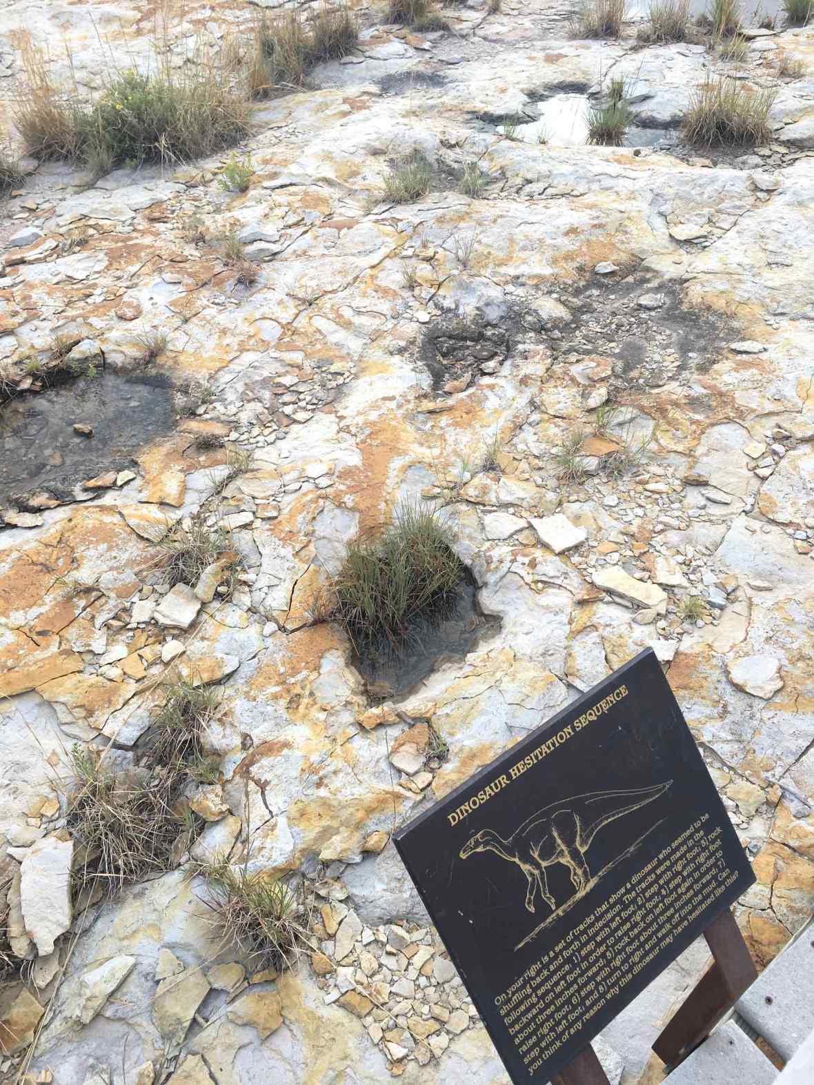 Dinosaur Trackway at Clayton Lake State Park