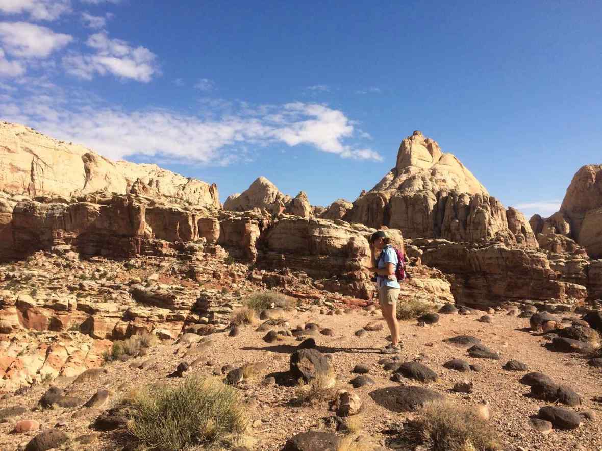 Cohab Canyon trail at Capitol Reef National Park