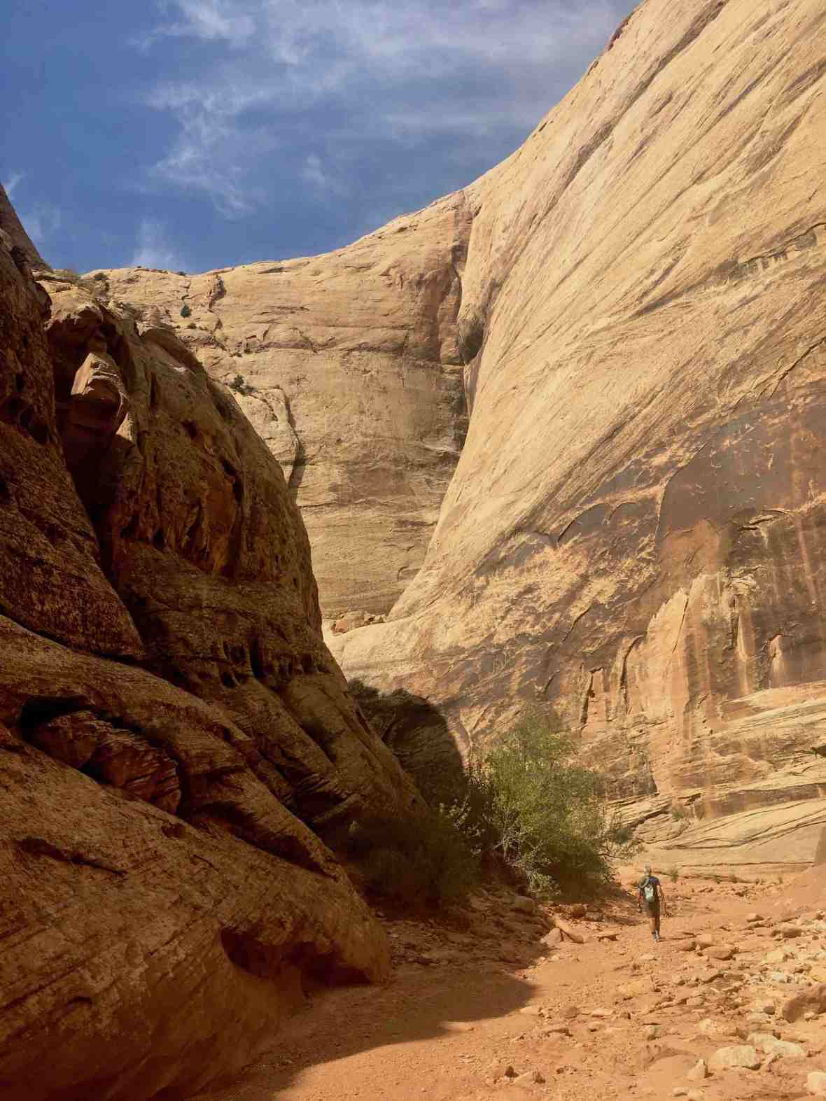 Grand Wash Trail at Capitol Reef National Park