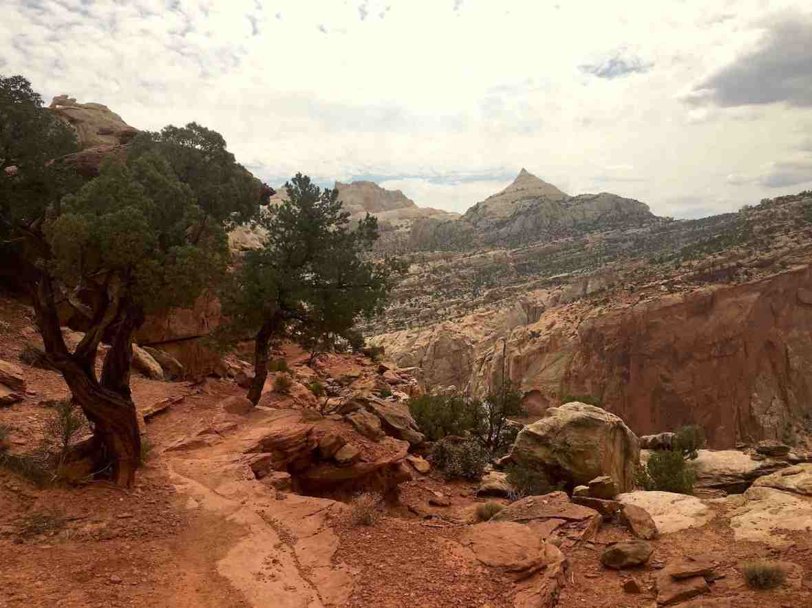 Cassidy Arch trail at Capitol Reef National Park