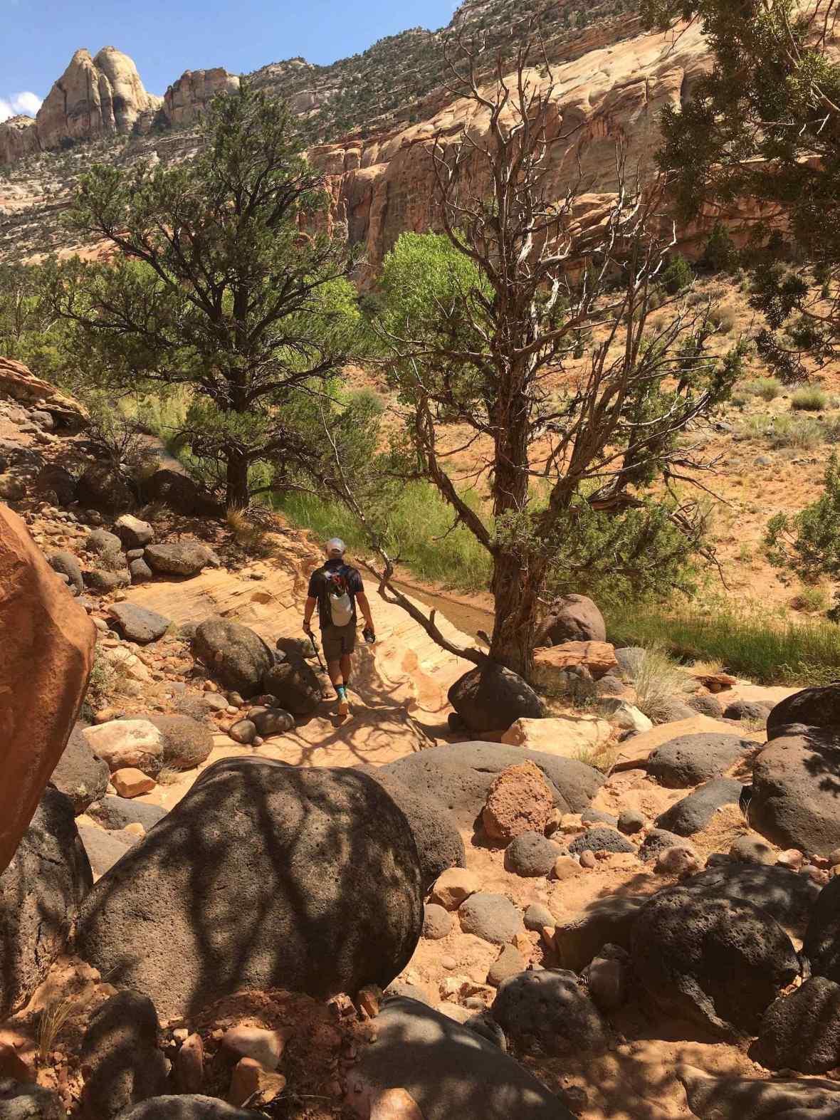 Boulder-strewn Pleasant Creek Trail in Capitol Reef National Park