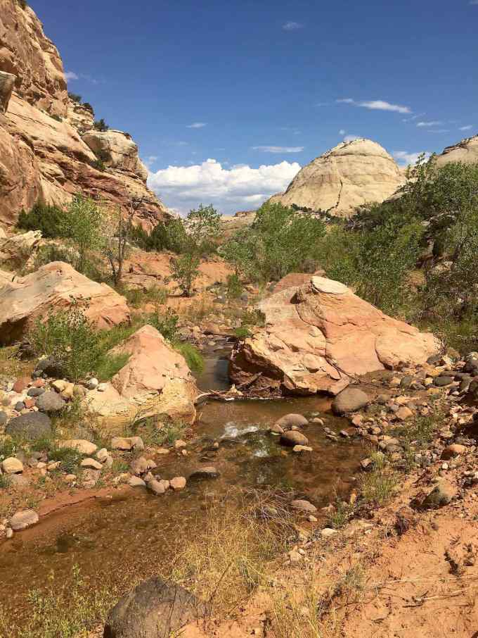 Along the Pleasant Creek Trail in Capitol Reef National Park
