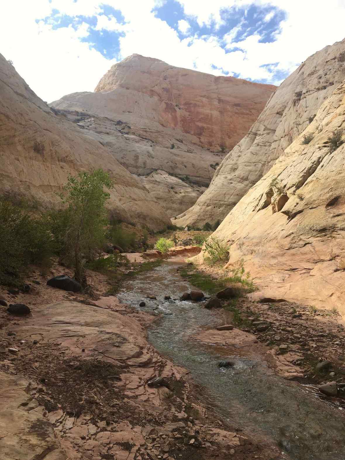 Pleasant Creek hike in Capitol Reef National Park