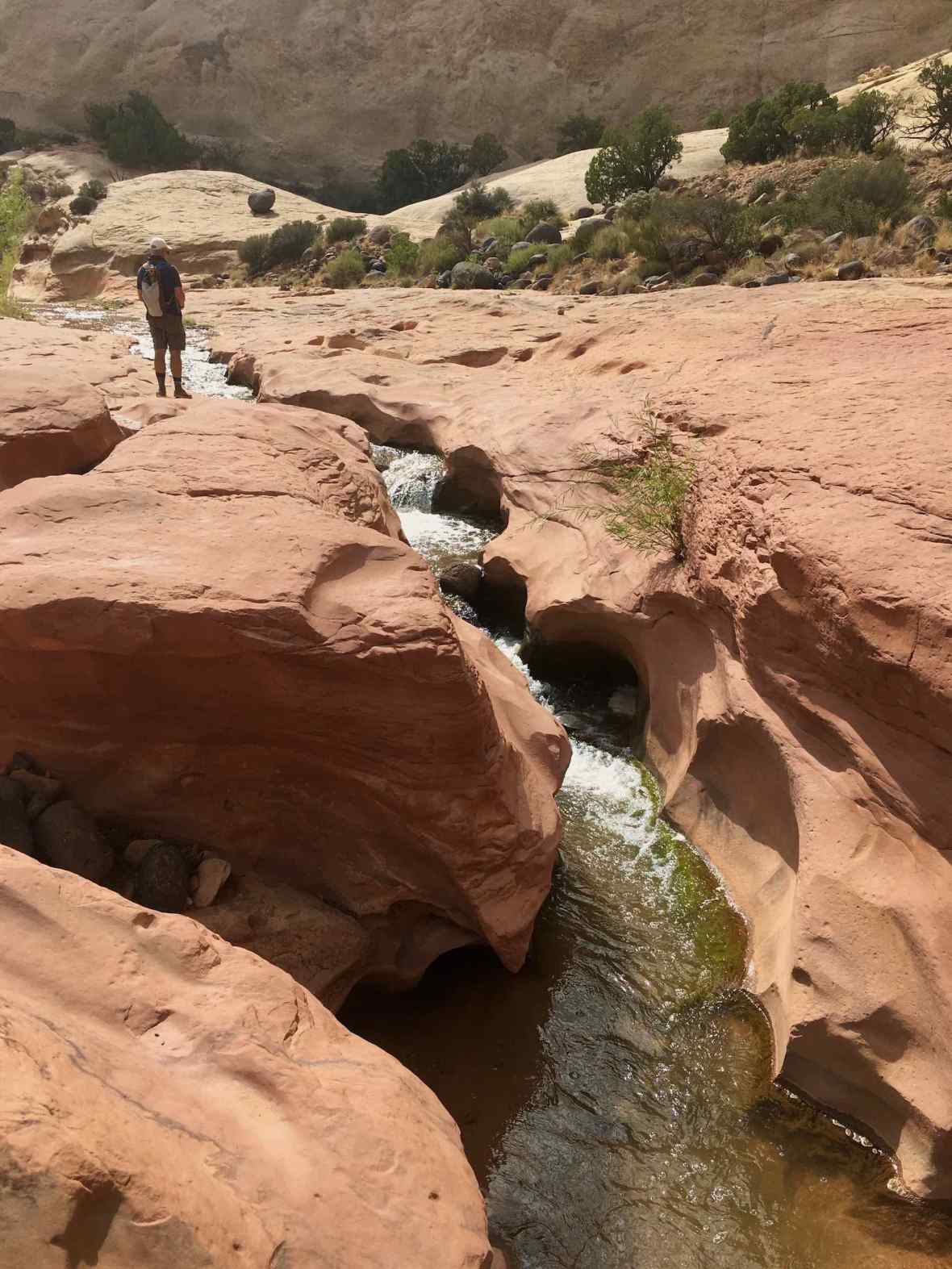 Pleasant Creek in Capitol Reef National Park