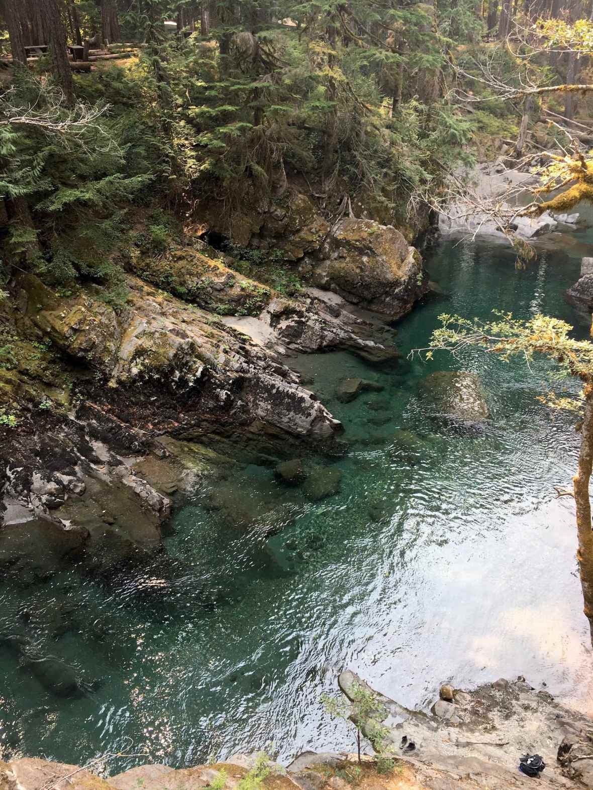 Ohanapecosh River in Mt Ranier National Park