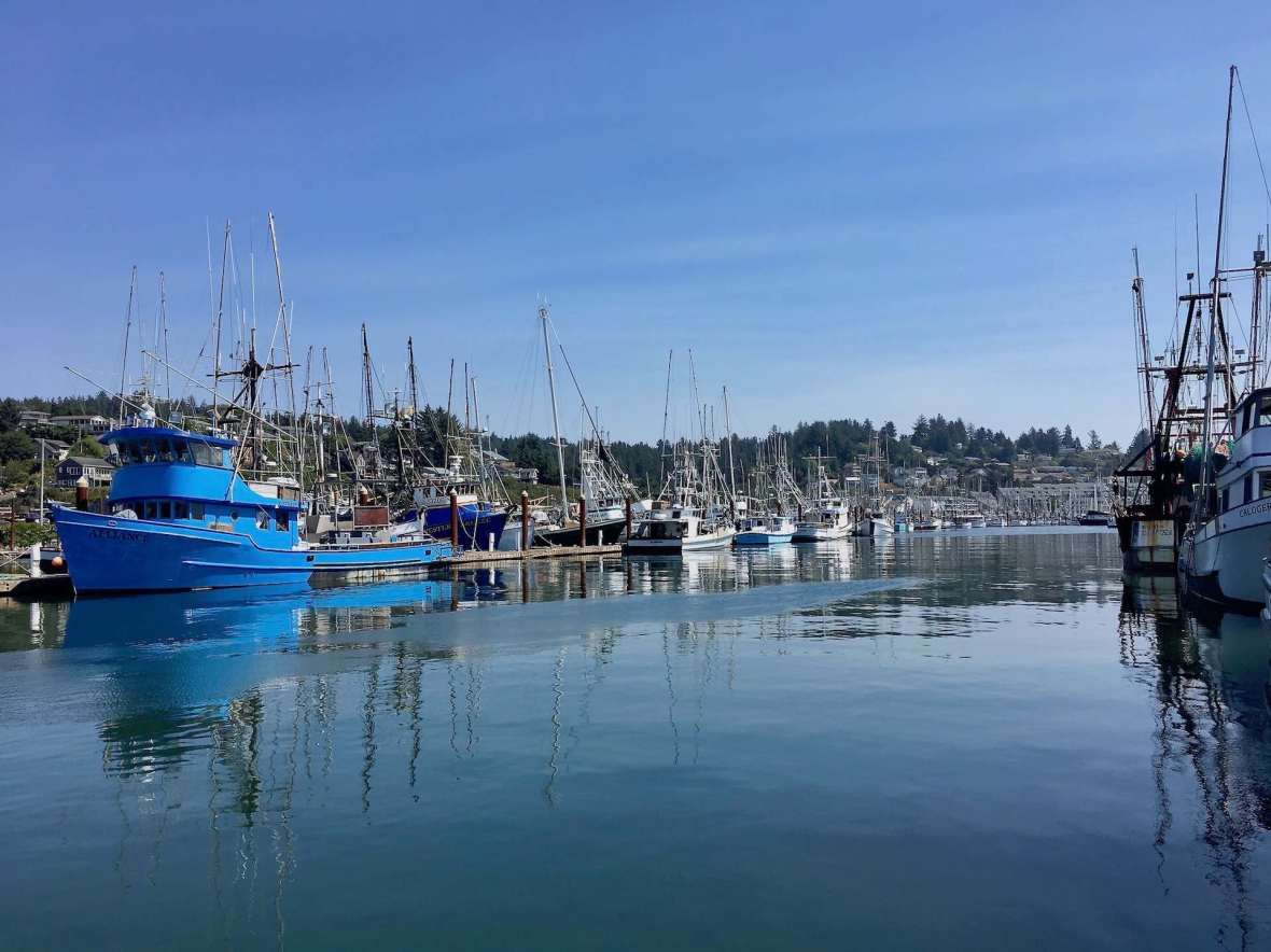 Colorful fishing boats in Newport Oregon's working harbor