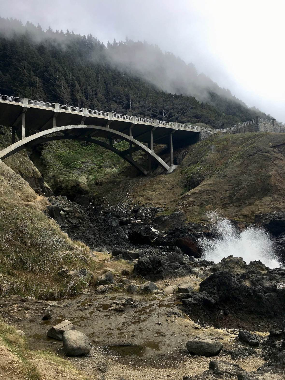 Bridge at Cook's Chasm Cape Perpetua Scenic Area Oregon Coast Highway 101