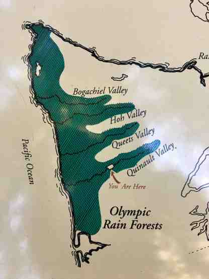 Map of Olympic National Park rainforests