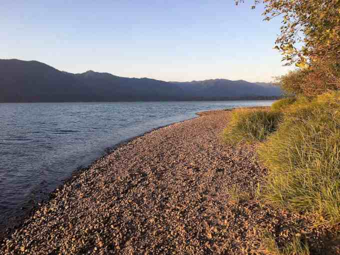 Pebble beach on Lake Quinault Willaby campground Olympic National forest park Washington