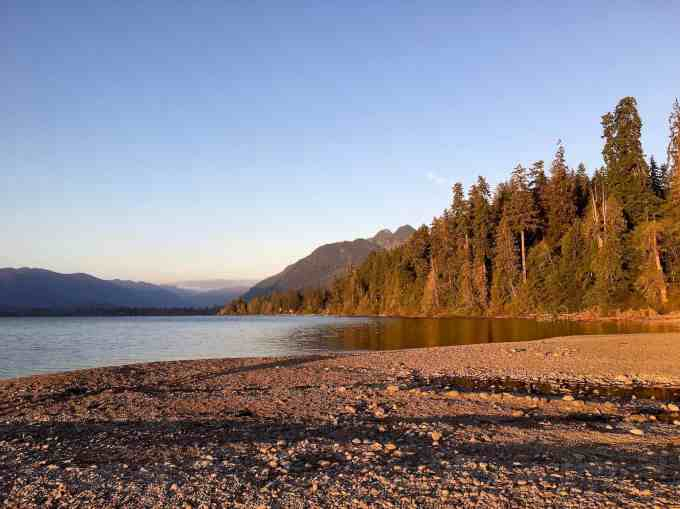 Pebble beach at Willaby Campground Lake Quinault Olympic national park forest Washington