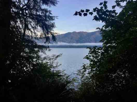 View of Lake Quinault from our campsite, Willa Campground Olympic National Forest