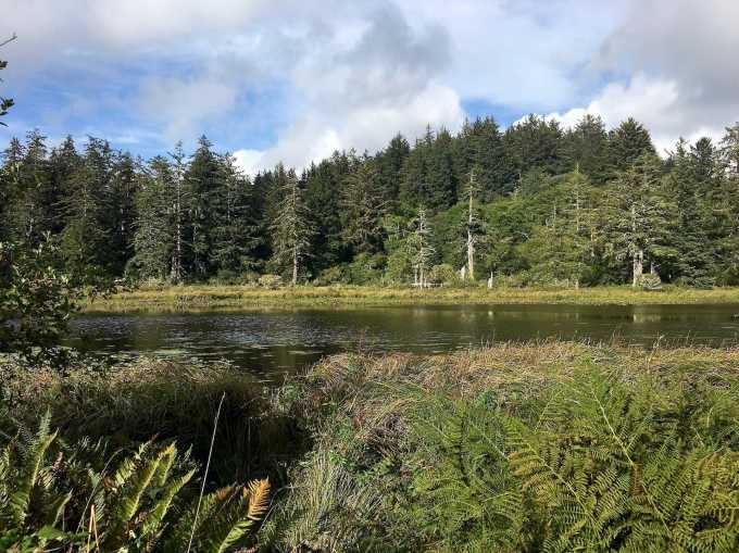 Long Lake Cape Disappointment State Park Washington