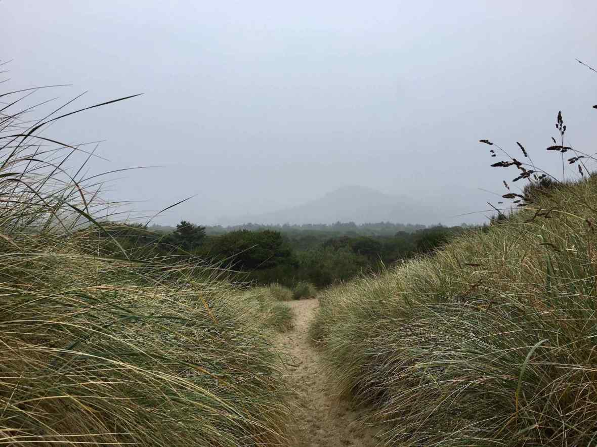 Path between campground and beach at Nehalem Bay State Park