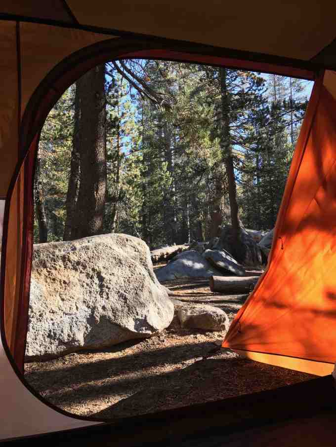 Gear Review REI Co-op Grand Hut 4 at Porcupine Flat Campground, Yosemite National Park