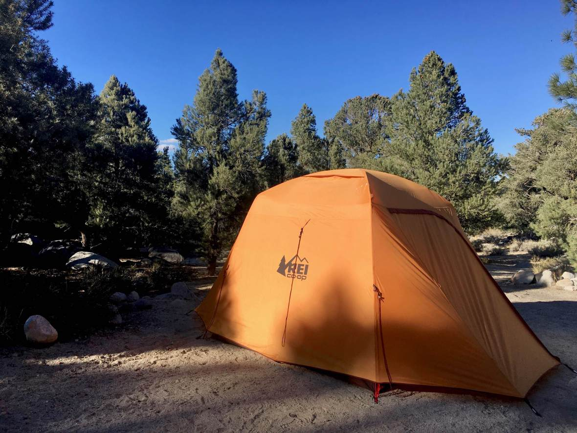 Gear Review REI Co-op Grand Hut 4 Tent in French Camp Campground Inyo National Forest