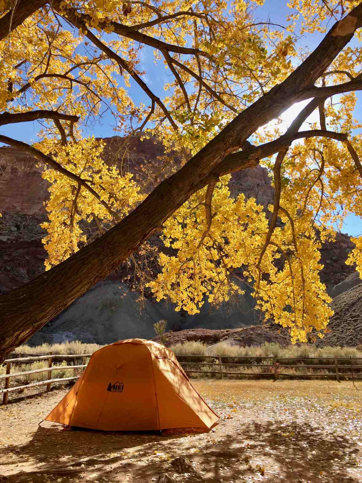 Gear Review REI Co-op Grand Hut 4 camping at Capitol Reef National Park