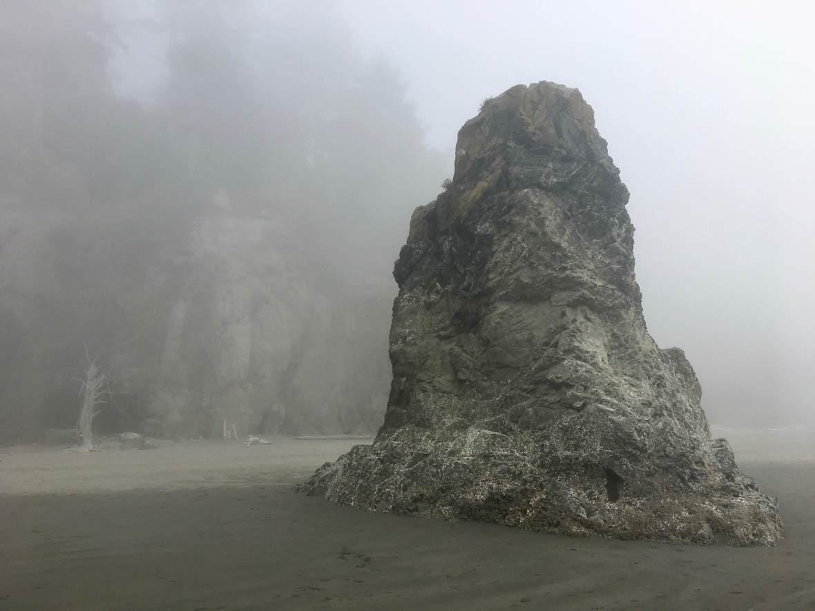 Ruby Beach Abbey Island in the fog Olympic National Park