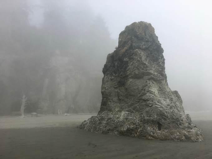 Ruby Beach Abbey Island in the fog Olympic National Park