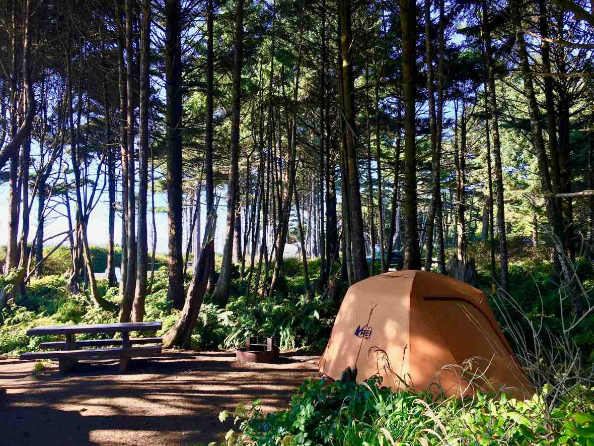 Gear Review REI Co-op Grand Hut 4 Tent in Kalaloch Campground Olympic National Park