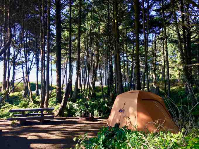 Our perfect site at Kalaloch campground, Olympic National Park
