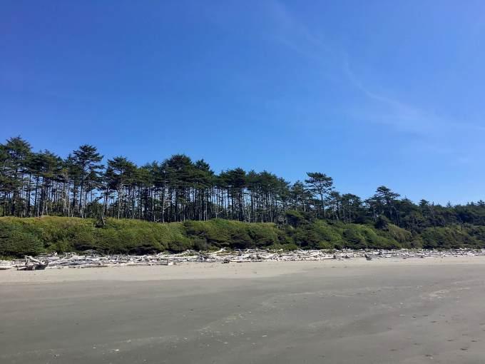 Kalaloch Beach to Beach 1 Olympic National Park