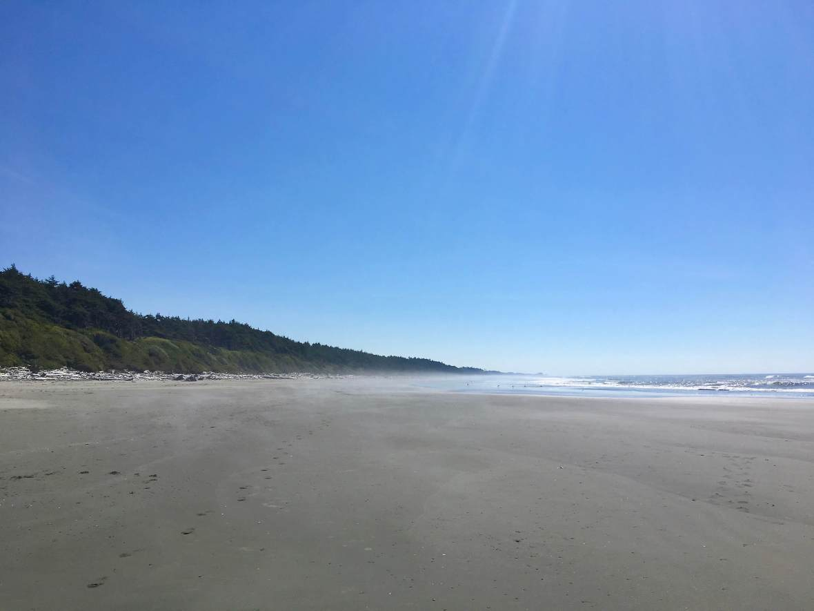 The walk from Kalaloch Beach to Beach 1, Olympic National Park