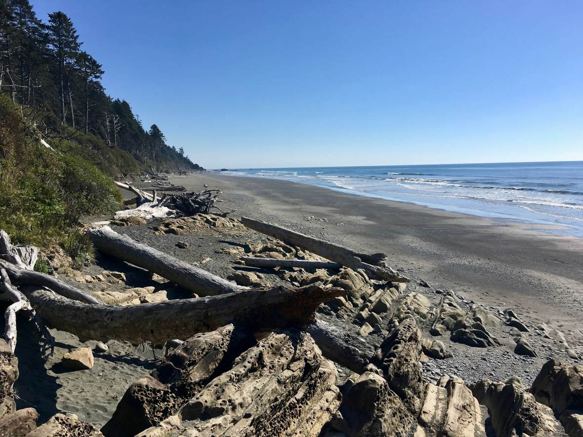 Beach 4, Olympic National Park
