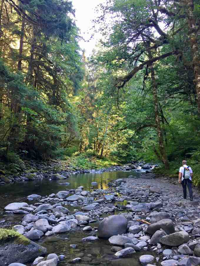 North fork of the Sol Duc River