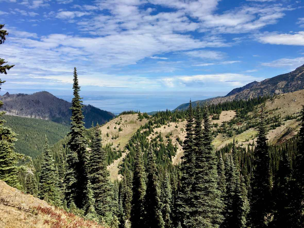View of the Strait of Juan de Fuca from Hurricane Ridge Olympic National Park