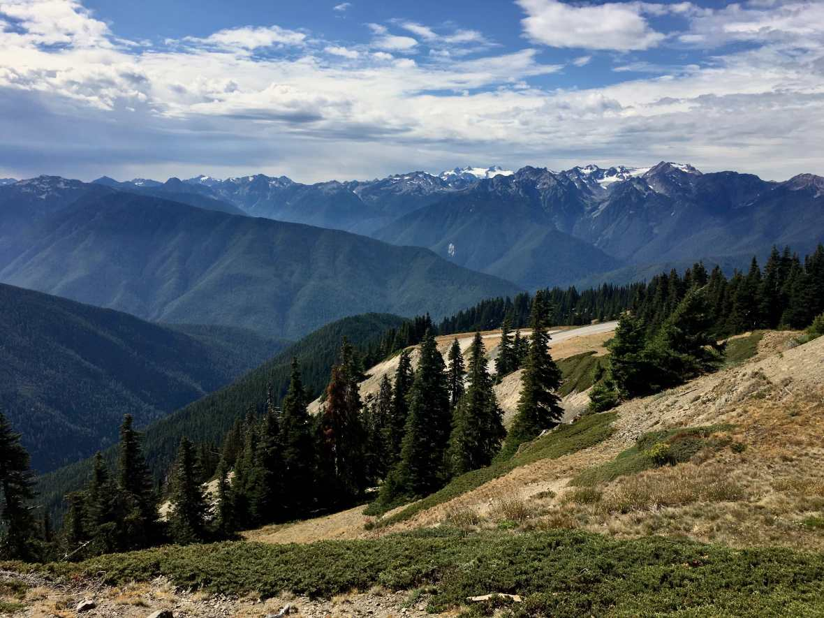 View of Mount Olympus from Hurricane Ridge Olympic National Park