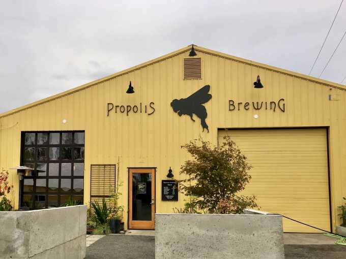 Propolis Brewing in Port Townsend Washington