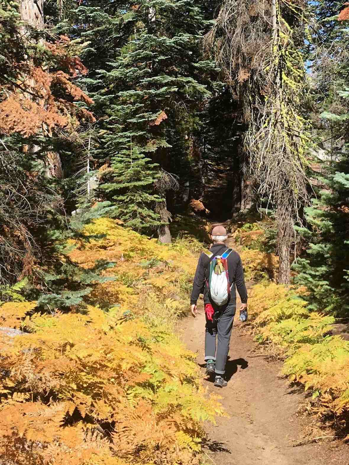 gear review autumn hiking in Yosemite National Park with Cotopaxi Luzon 18L daypack