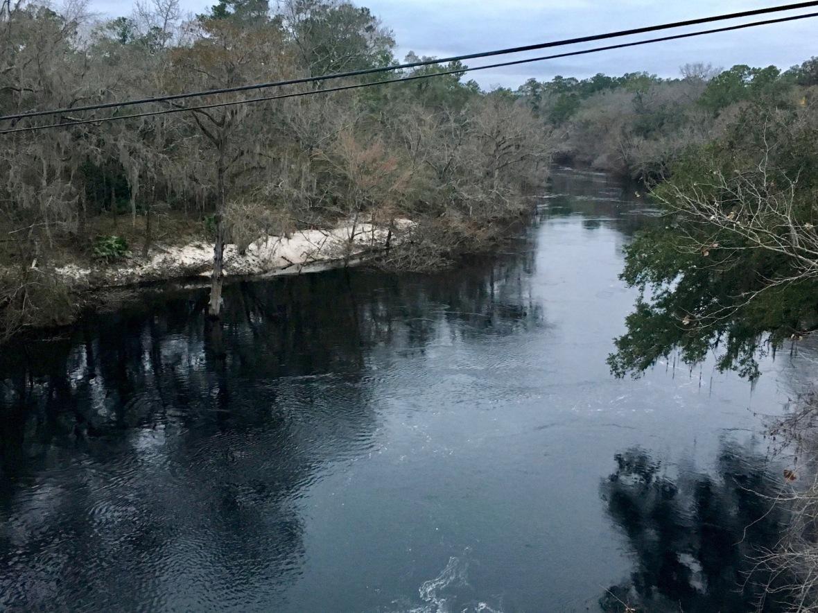 Blackwater Suwannee River viewed from bridge in White Springs, Florida