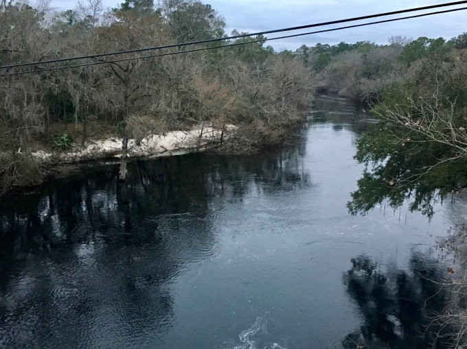 Blackwater Suwannee River viewed from bridge in White Springs, Florida