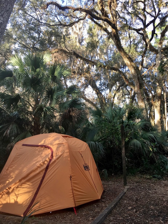 Camping under the live oak trees and palmettos at Payne's Prairie Preserve State Park Campground