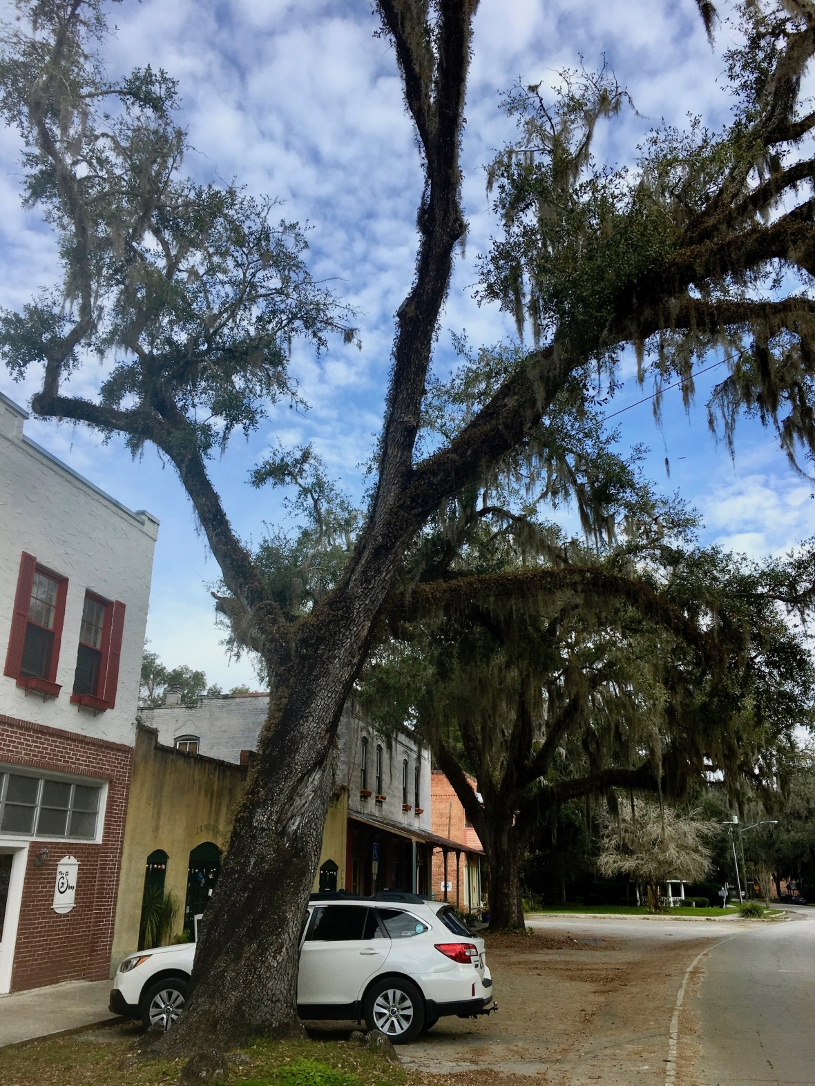 Downtown Micanopy Florida on a cold January morning