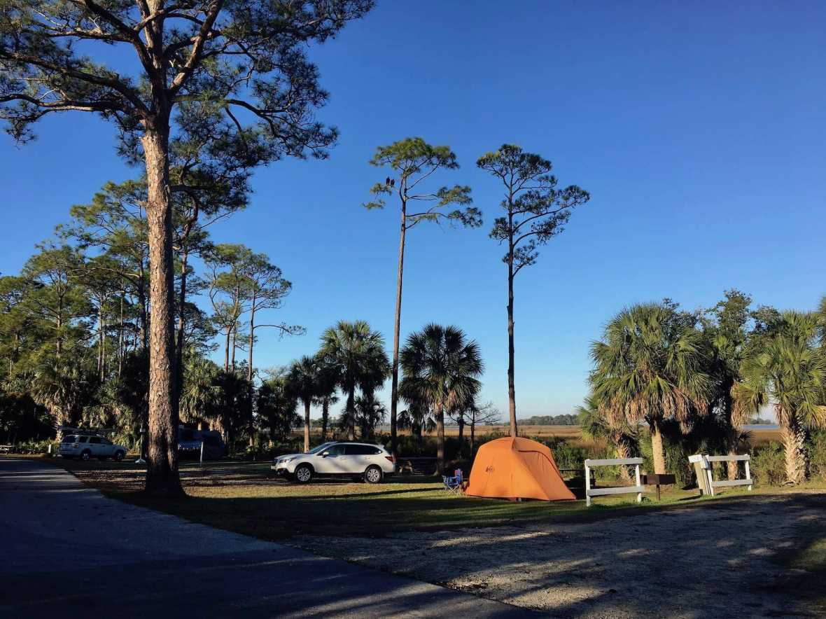 Waterfront campsites at Shell Mound campground Levy County Park Cedar Key