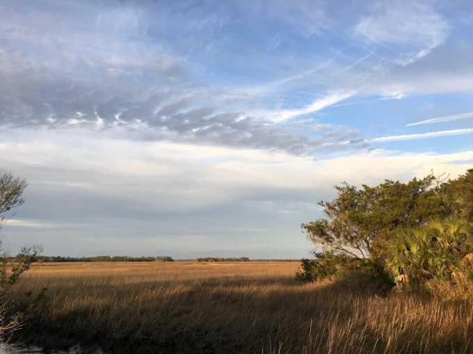 Salt Marsh at Shell Mound, Lower Suwannee NWR