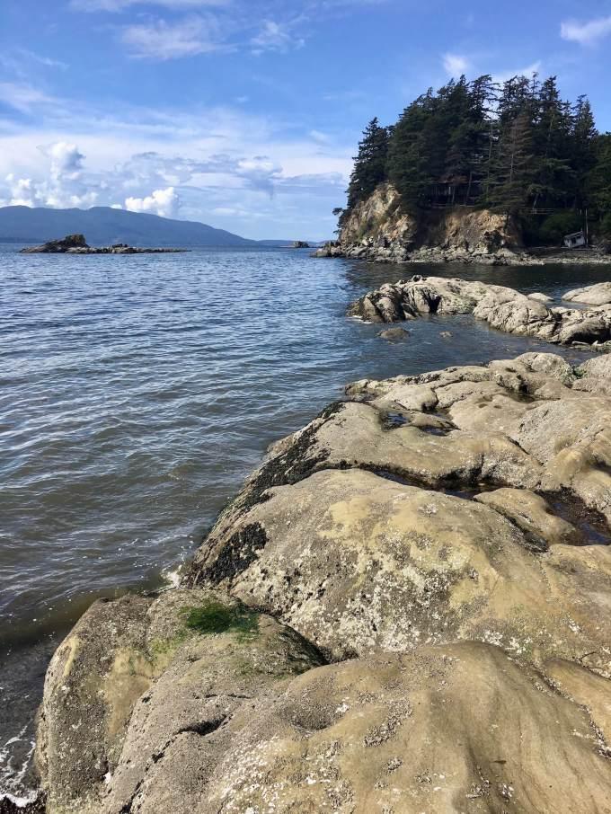 Shoreline at Larrabee State Park in Bellingham, Washington