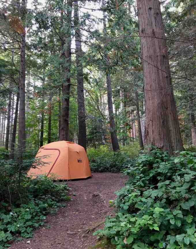 Camping in the REI Co-op Grand Hut 4 at Larrabee State Park in Bellingham, Washington