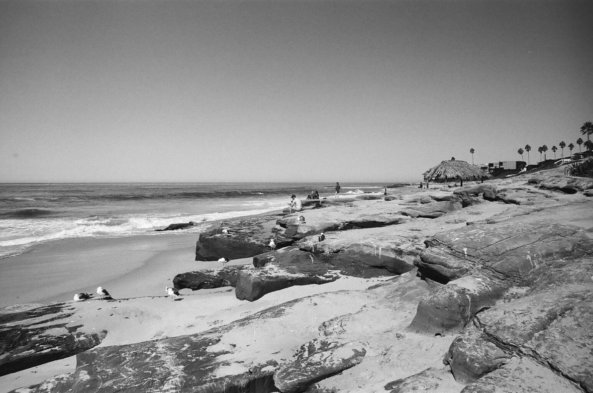 35mm film photography Kodak Tri-X black and white Windansea Beach La Jolla San Diego California Nikon F2