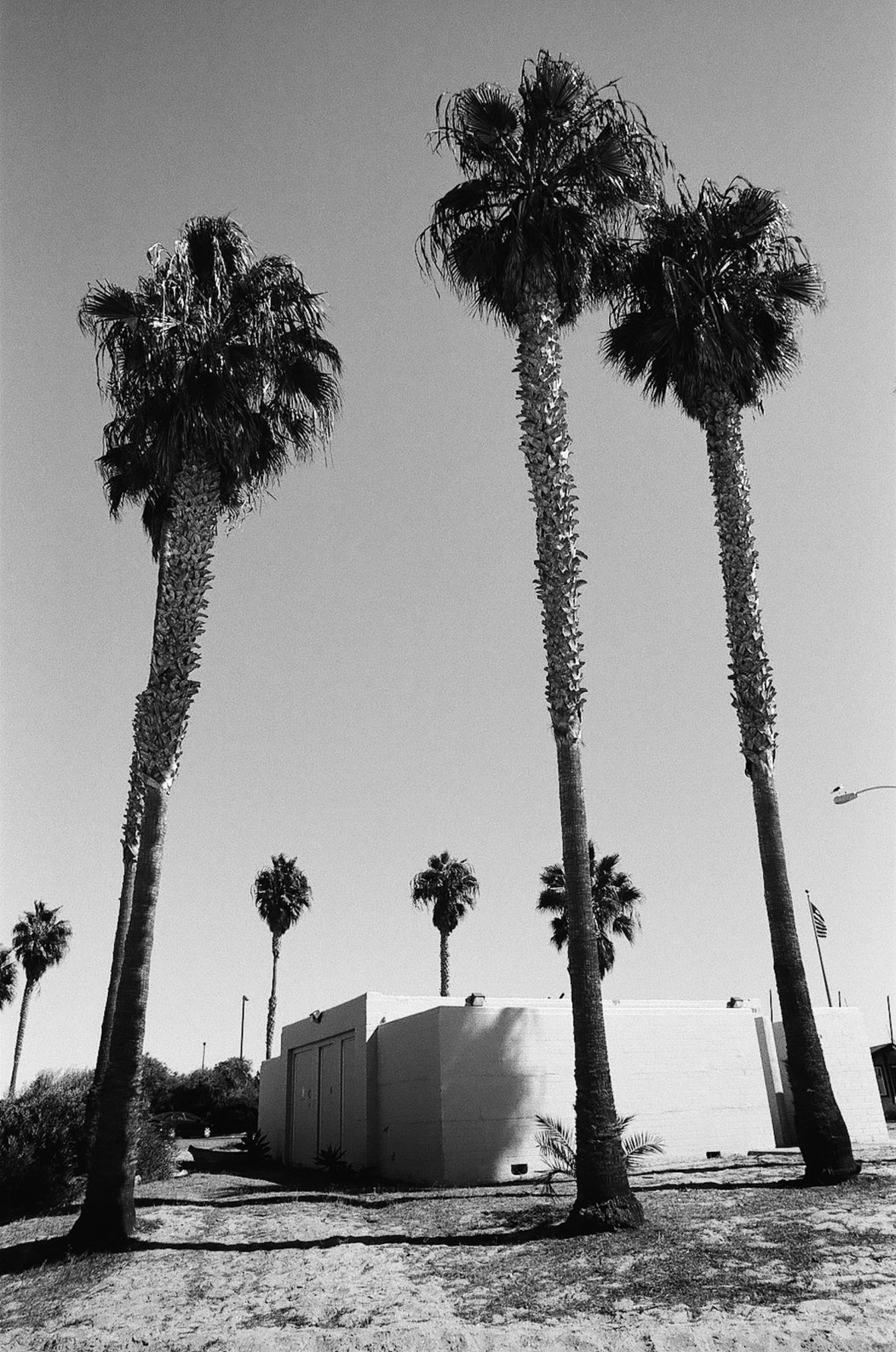 35mm film photography Kodak Tri-X black and white Mission Bay Beach Brutalist Architecture Nikon F2