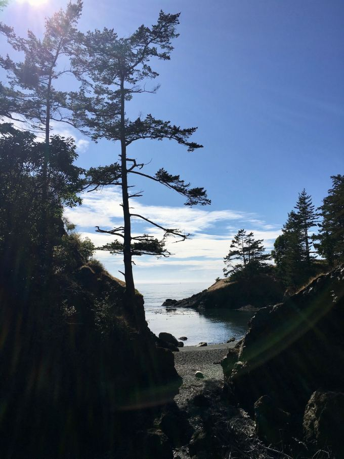 This is where the Lighthouse Loop trail disappears Deception Pass State Park Washington