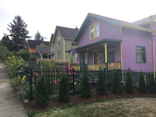 Colorful historic Bellingham homes