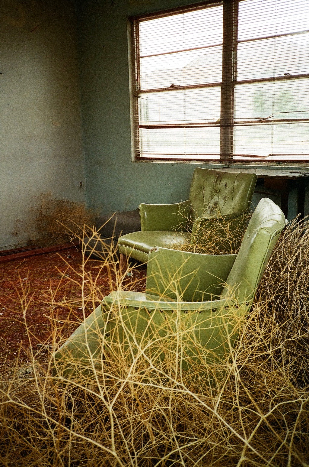 35mm film photography Tumbleweeds inside the Thompson Springs Motel, Utah