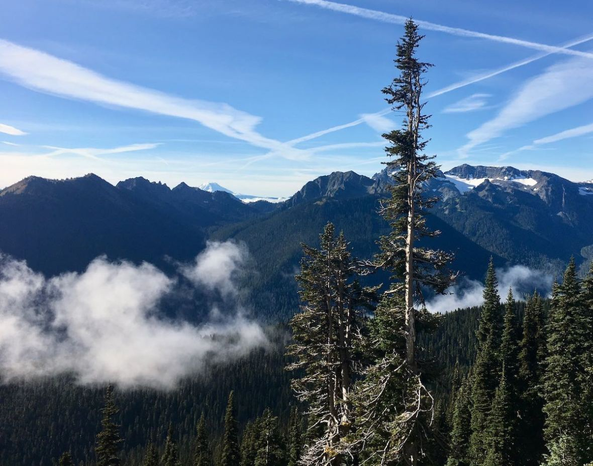 Looking South from Sunrise Point in Mount Rainier National Park