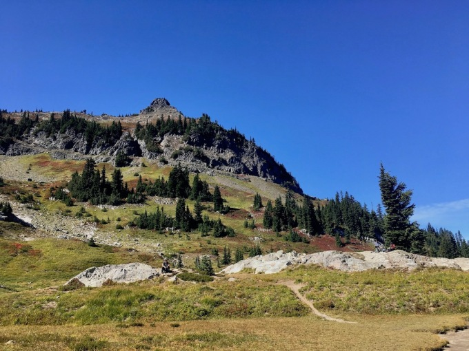 looking up toward the Naches Peak loop trail from the glacial pond