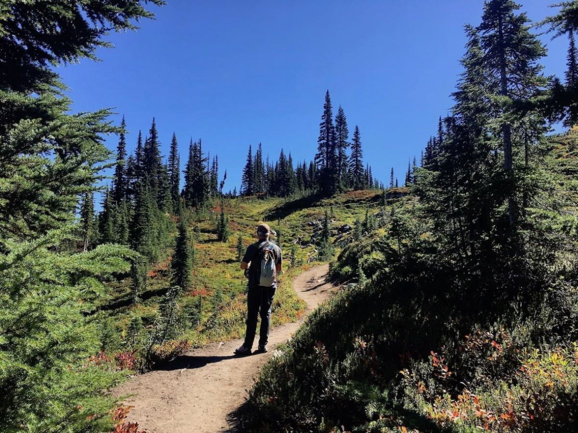 Continuing to climb as we hike through subalpine meadows on the northeastern side of Naches Peak loop
