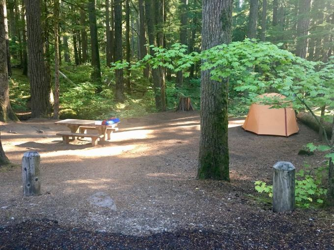 Our campsite in Ohanapecosh Campground in Mount Rainier National Park