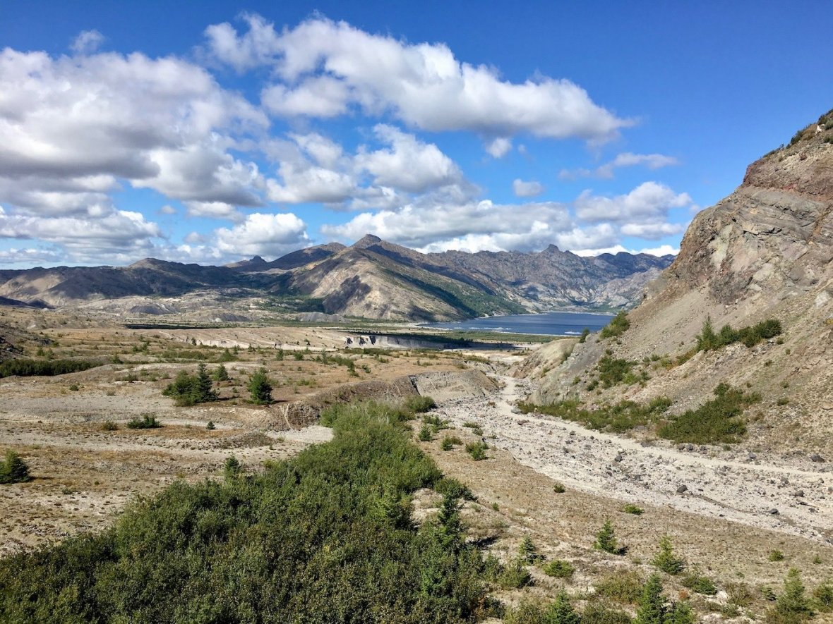 Overlooking the pumice field, debris trail, and Spirit Lake from Trail #207 in Mount St. Helens National Volcanic Monument